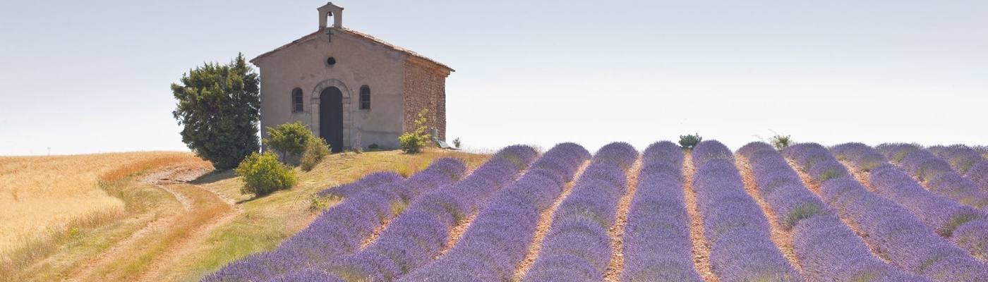 vaucluse kapelle lavendel provence