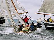 Segelboote im Wettbewerb - Flensburger Rumregatta