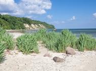 goehren strand