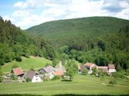 neckar odenwald wald ferienwohnung buchen