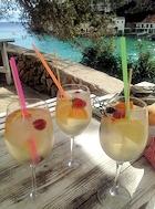 santanyi cocktails
