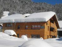 Oberhauser Dunja, Ferienwohnung 2 in Schoppernau - kleines Detailbild