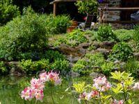 Haus Jägerfleck, Ferienwohnung Falkenstein mit Südbalkon in Spiegelau - kleines Detailbild
