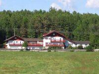 Landhaus Waldeck Georg Schreiner, Ferienwohnung 1, 35qm, 1 Schlafraum, max. 2 Personen in Regen - kleines Detailbild