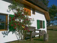 Kleines Appartement im Fischerhaus Hiddensee, Appartement im Fischerhaus 22 qm in Neuendorf-Insel Hiddensee - kleines Detailbild