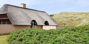 Ferienhaus in Hvide Sande, Haus Nr. 43772 in Hvide Sande - kleines Detailbild
