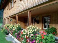 Haus Üntschenblick, Ferienwohnung Gamsboden (4 Personen) 1 in Schoppernau - kleines Detailbild