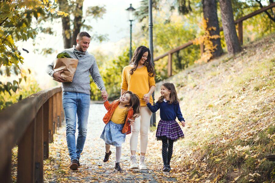 Natur mit Weinbergen + Freizeit + Kultur