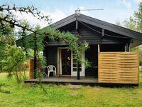 Ferienhaus in Fårvang, Haus Nr. 43821 in Fårvang - kleines Detailbild