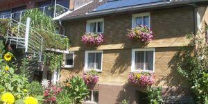 Haus Metzler, Hirschberg 1 in Bizau - kleines Detailbild