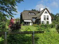 Haus am See, FeWo Seekoppel in Timmendorfer Strand - kleines Detailbild