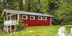 Ferienhaus in Sävsjö, Haus Nr. 9987 in Sävsjö - kleines Detailbild