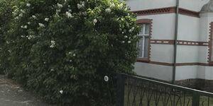 Ferienwohnung Fliederhecke in Ducherow - kleines Detailbild