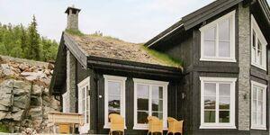 Ferienhaus in sogndal, Haus Nr. 44944 in sogndal - kleines Detailbild