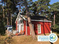 Ferienhaus Schatzkiste 228 in Baabe - kleines Detailbild