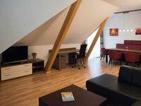 Lang's Wirtshaus, Shettlandponykoppel 1 in Neufelden - kleines Detailbild