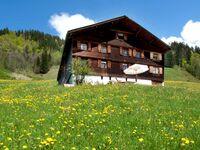 Bauernhaus auf der Halde - Hütte Ritter, Hütte (6-10 Personen) 1 in Schoppernau - kleines Detailbild