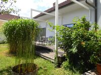 Wagramperle, Ferienhaus 1 in Kirchberg am Wagram - kleines Detailbild