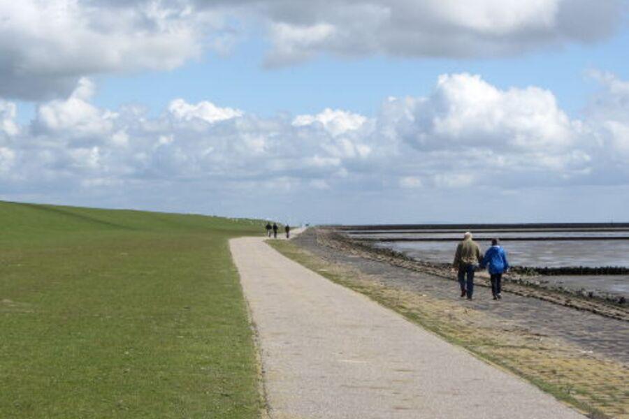 Nordseedeich und Wattenmeer