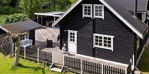 Ferienhaus in Tranekær, Haus Nr. 45905 in Tranekær - kleines Detailbild