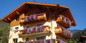 Ferienwohnung Haus Schnepfleitner, Ferienwohnung 4 Personen in Dorfgastein - kleines Detailbild