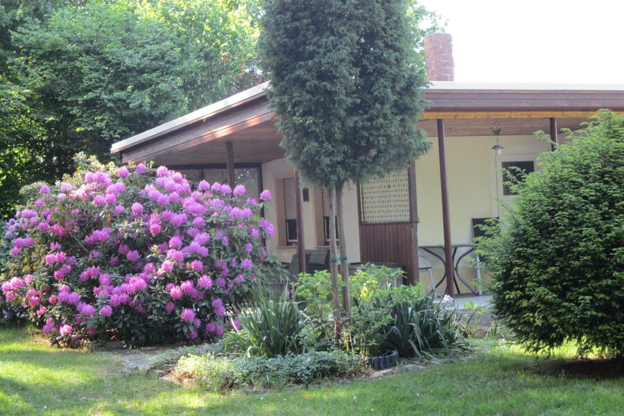 Blick auf das Ferienhaus Wiesengrund 10