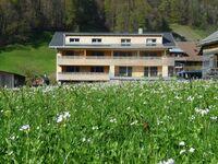 Haus Gmeiner, Top 2 in Bizau - kleines Detailbild