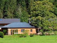 Ferienhaus Hirschau NEU, Ferienhaus Hirschau in Schnepfau - kleines Detailbild