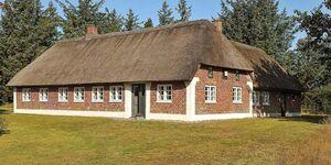 Ferienhaus in Hvide Sande, Haus Nr. 50431 in Hvide Sande - kleines Detailbild