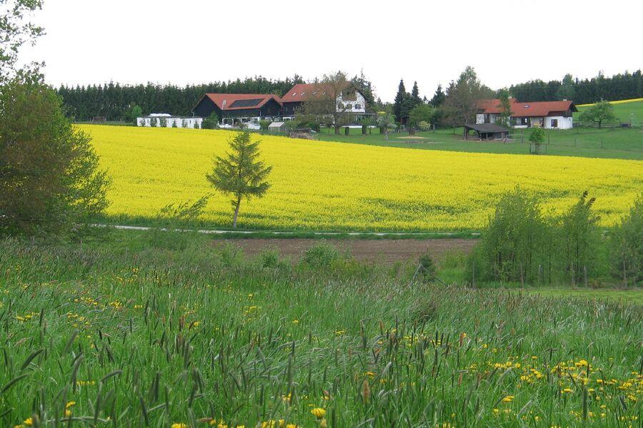 Ausblick vom Ferienhaus
