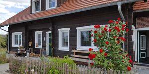 Spreewaldhaus zum Schoberplatz - Libelle in Lübben - kleines Detailbild