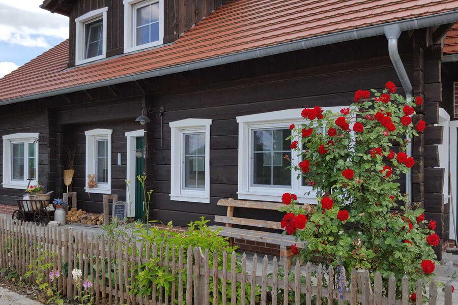 Spreewaldhaus zum Schoberplatz - Libelle