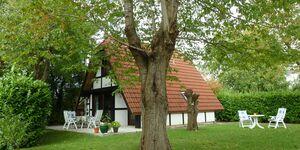 Ferienhaus Elbidylle in Hollern-Twielenfleth - kleines Detailbild