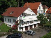 Ferienwohnung Herter Nr. 2 in Uhldingen-Mühlhofen - kleines Detailbild