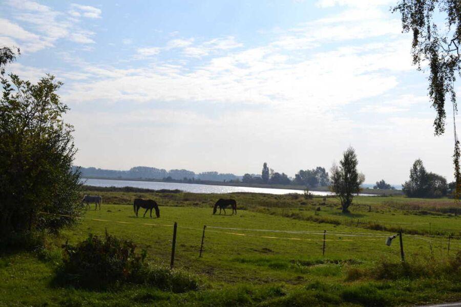 Stier, Gundula, Ferienwohnung Stier