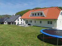 Apartment 'Eifelstern' in Obermehlen - kleines Detailbild