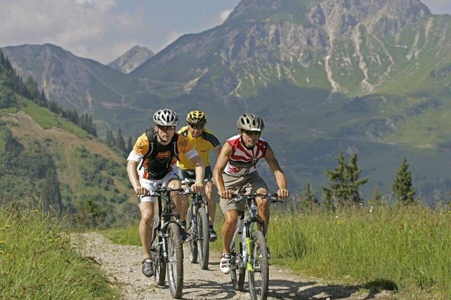 Radtouren und Mountainbiken