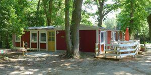 Ferienhaus Uschi -  Bungalow 29 in Dranske - kleines Detailbild