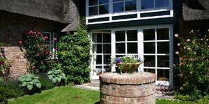 3000 Haus Reethus, Reethus WE 4, Seeschwalbe in Borgsum - kleines Detailbild