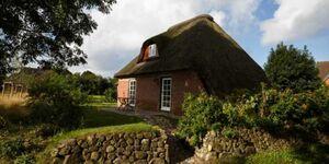 3200 Das Bauernhaus, Pesel in Borgsum - kleines Detailbild