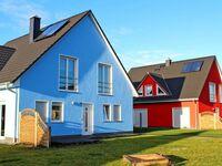 Ferienwohnungen Lütow USE 3100, USE 3102 - Mohnblume in Lütow-Usedom - kleines Detailbild