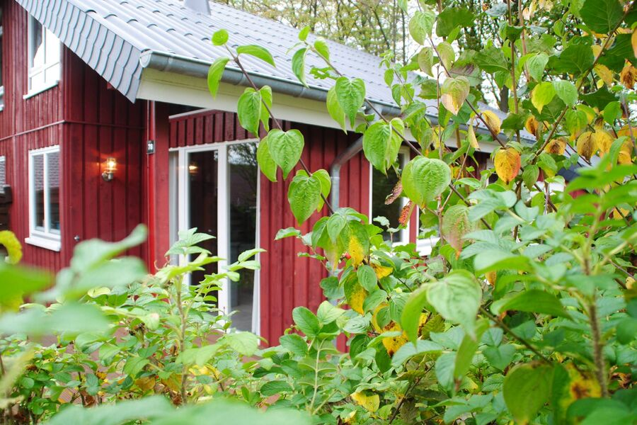 idyllisches Extertal-Ferienhaus IXI