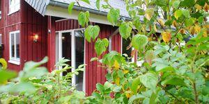 Ferienhaus IXI  in Extertal - kleines Detailbild