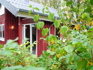 Ferienhaus IXI  in Extertal - Deutschland - kleines Detailbild