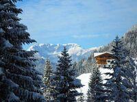 Ferienwohnung Unterfoisching in Wildschönau - Oberau - kleines Detailbild