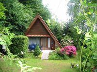 Haus Waldparadies - Finnhütte in Otzberg-Ober-Nauses - kleines Detailbild