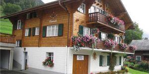 Meiriesli (Chalet, Parterre) - Ernen, 2 Zimmerwohnung mit Rasenplatz 1 in Ernen - kleines Detailbild
