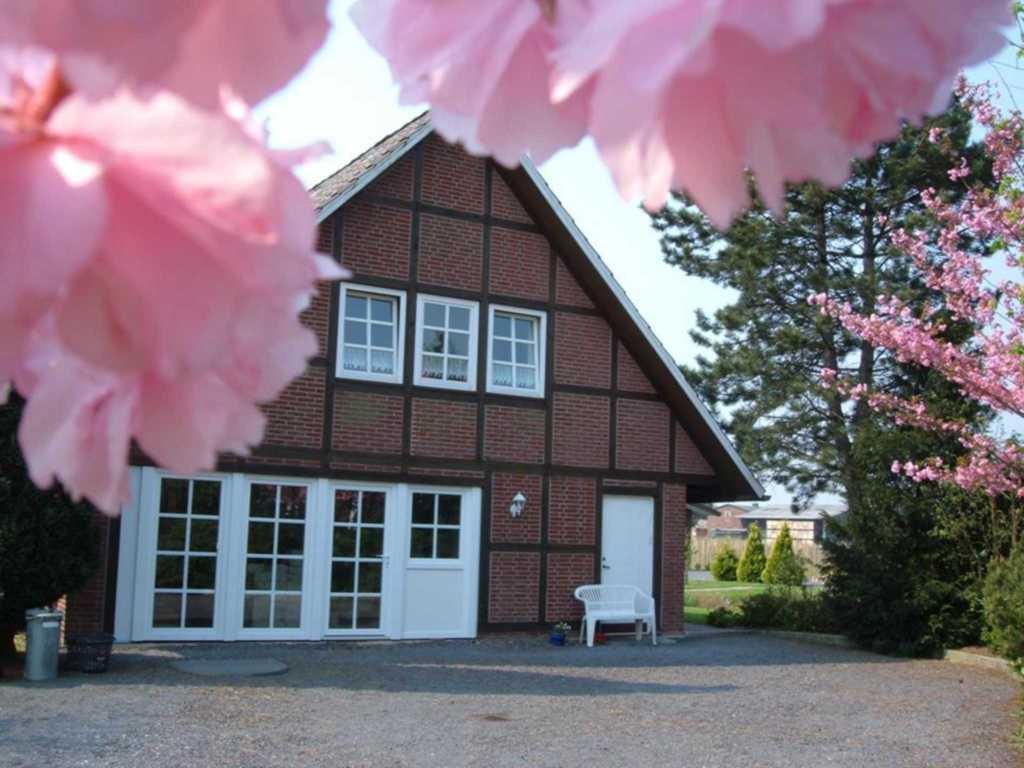 Ferienwohnung & Appartement Maack Altes Land bei Hamburg, Appartement Altes Land Nähe Hamburg