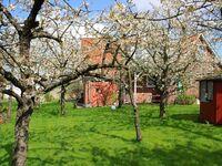 Knubberhaus - Das Ferienhaus im Kirschenhain, Ferienwohnung Garten nah in Steinkirchen - kleines Detailbild