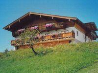 Ferienhaus-Bauernhof Bogstlhof, Ferienwohnung Jasmin in Achenkirch am Achensee - kleines Detailbild